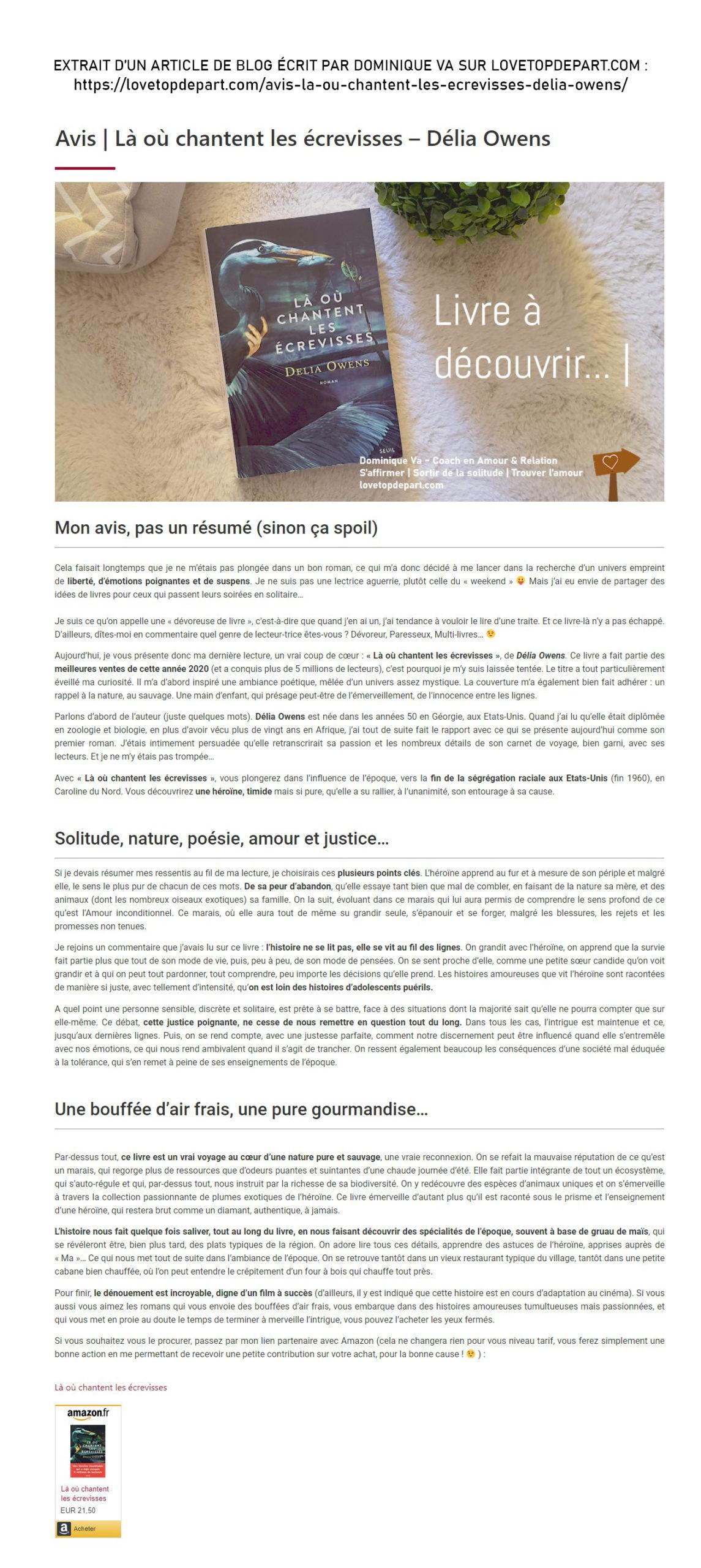 Rédaction Web - Dominique VA - Article Long